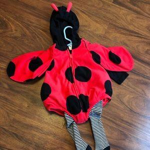 Carter's ladybug costume